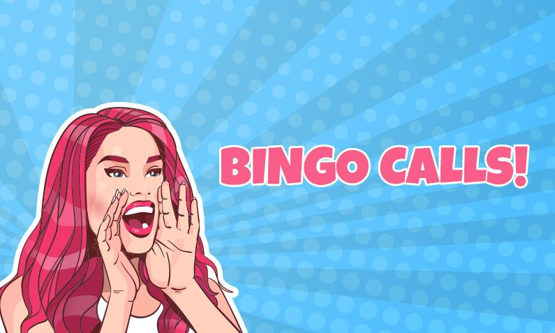 Bingo Calls: Bingo numbers and funny nicknames