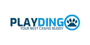 Playdingo review